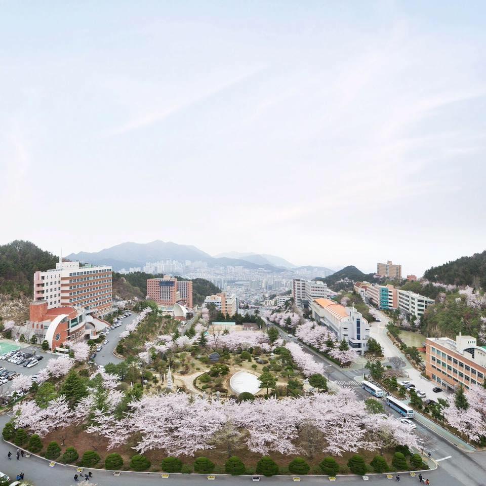 Giới thiệu chung về trường Đại học Dong-Eui - Dong-Eui University