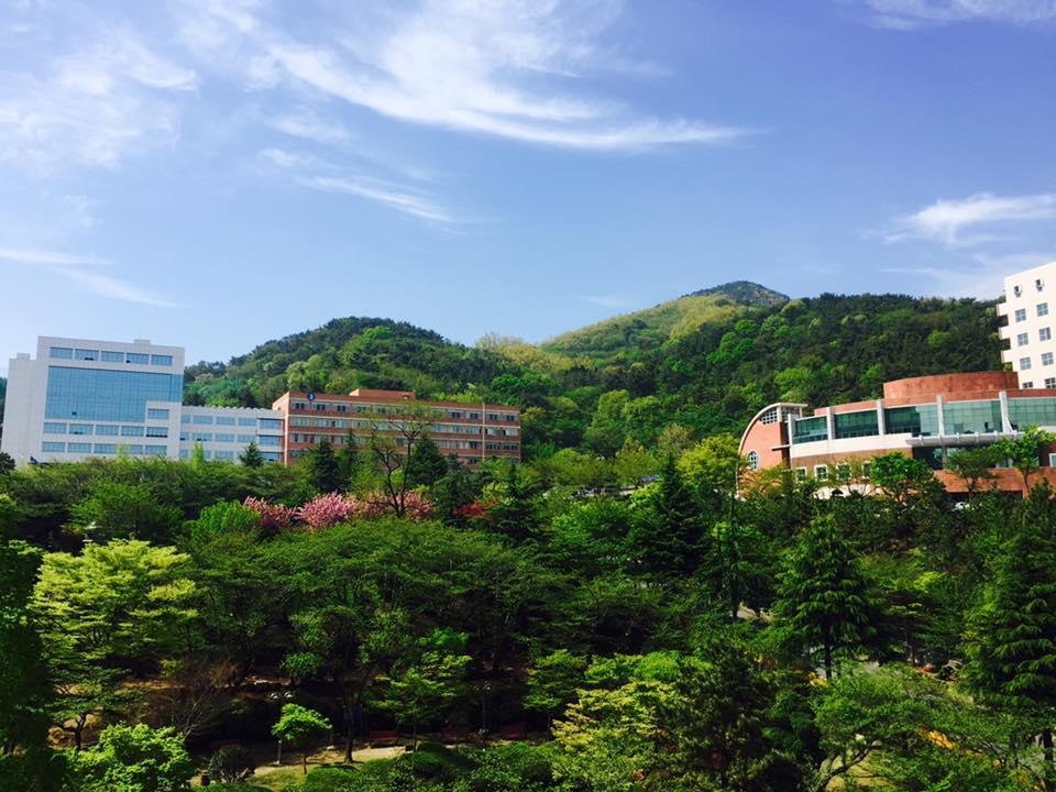 Màu xanh bát ngát trong khuôn viên trường Đại học Dong-Eui - Dong-Eui University